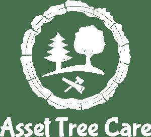 Asset Tree Care